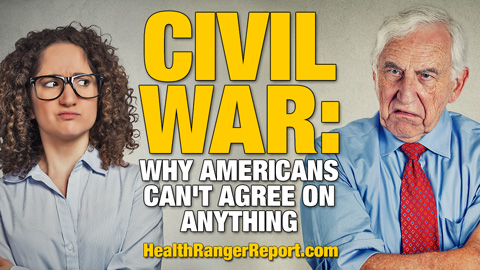 Image: Why America is headed for civil war