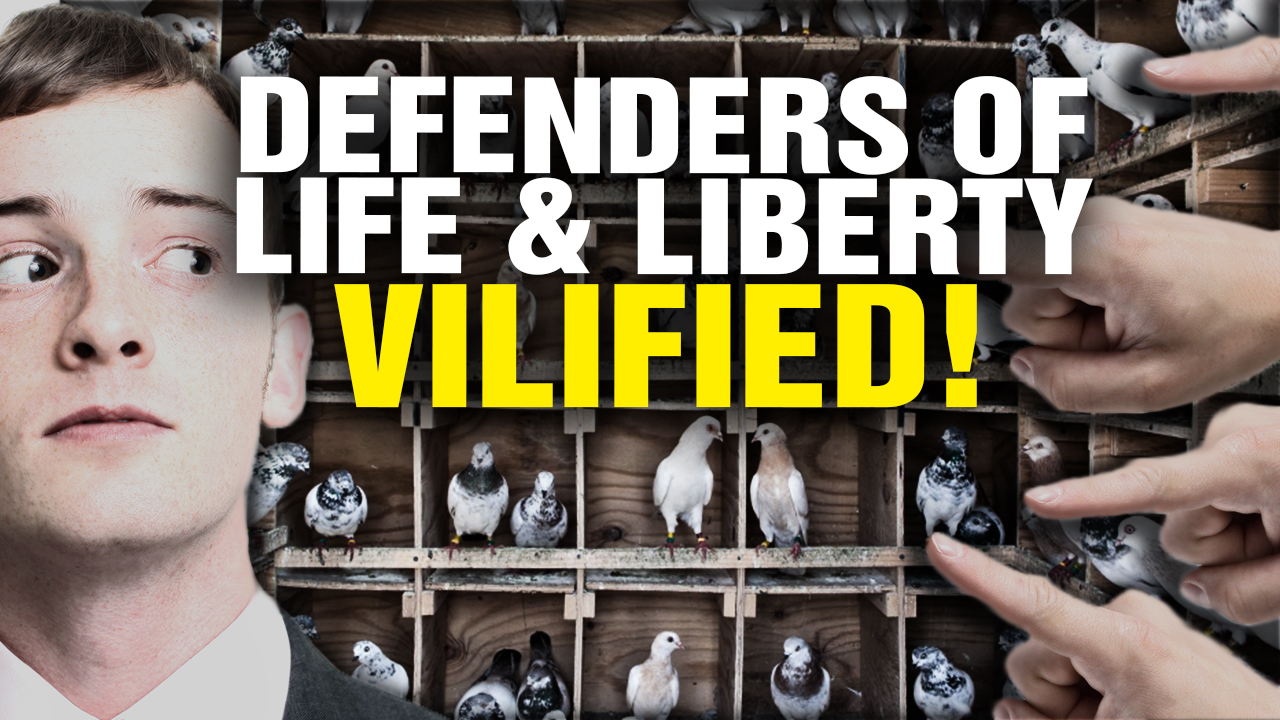 Image: Defenders of LIFE and LIBERTY Are VILIFIED in Our Twisted Society (Video)