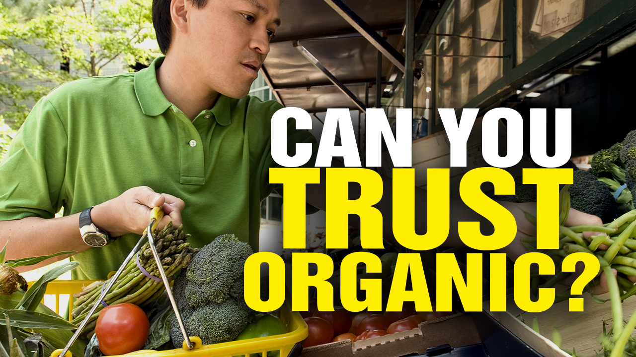 Image: Can You Trust ORGANIC? (Video)