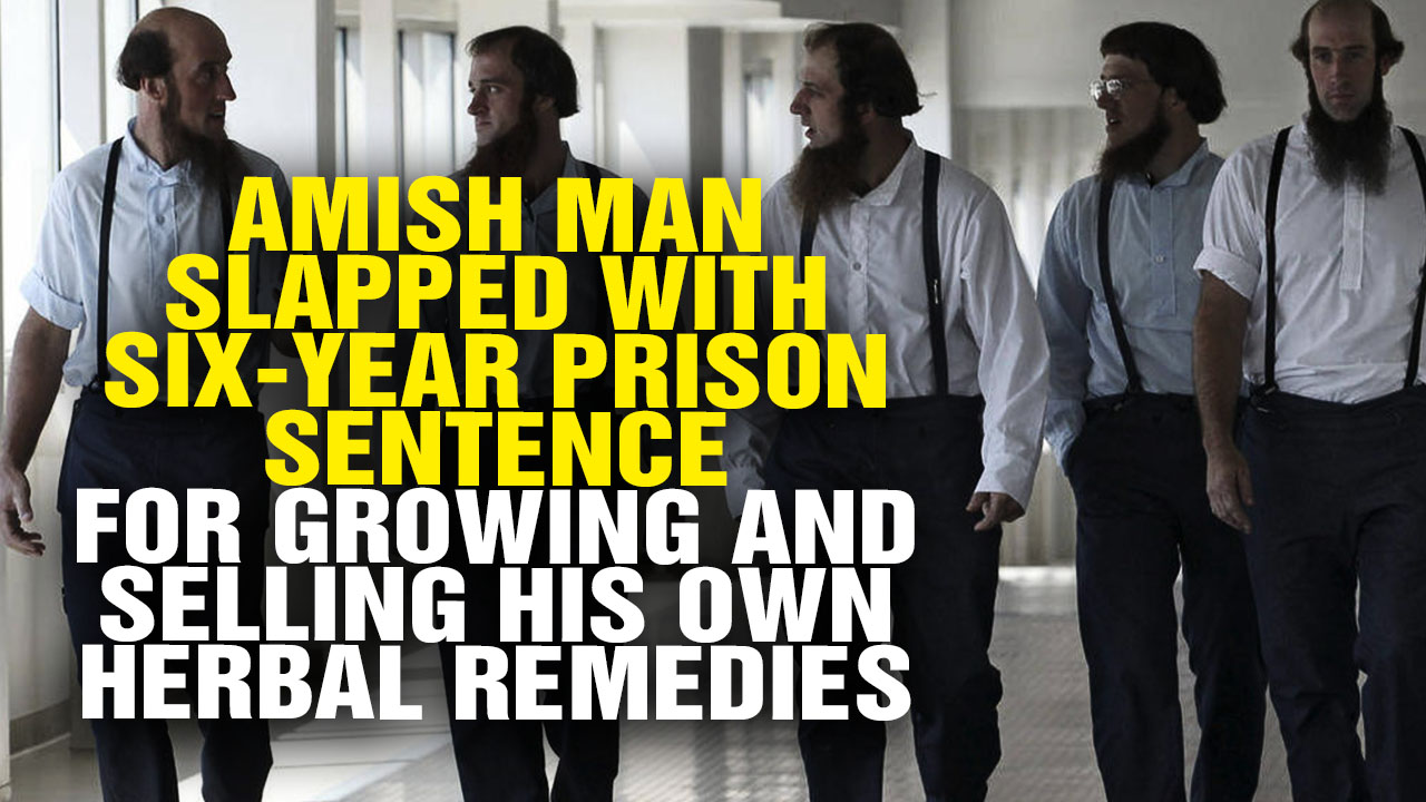 Image: Amish Man Slapped with Six-Year Prison Sentence for Growing and Selling His Own Herbal Remedies (Video)